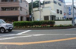 県道の花壇