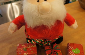 クリスマスプレゼントにいかがですか♪
